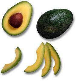 image لیست کامل و مفید غذاهای سالم و کشنده برای همه طوطی ها