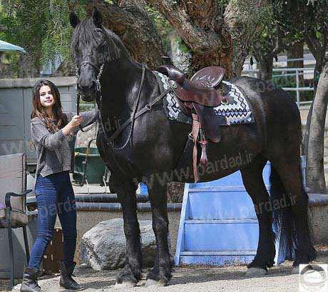 image سلنا گومز و ماجرای اسب سواری در مزرعه