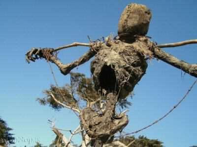 image, عکس ترسناک ترین مترسک دنیا در مزرعه