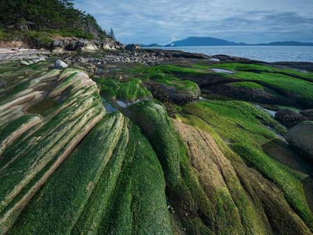 image جزیره پاتوس در حومه واشنگتن