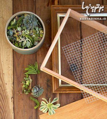 image, آموزش تصویری ساخت باغچه دیواری در حیاط کوچک