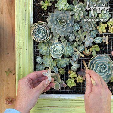 image آموزش تصویری ساخت باغچه دیواری در حیاط کوچک