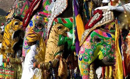 image فیل های تزیین شده در جشنواره فیل ها هند