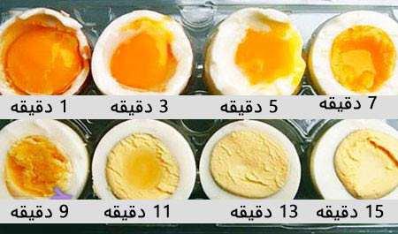 image چطور بهترین تخم مرغ دنیا را بپزیم