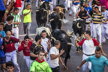 image جشنواره های گاو بازی در اسپانیا