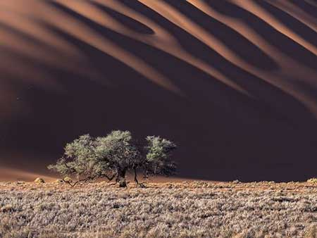 image صحرای کشور آفریقایی نامیبیا