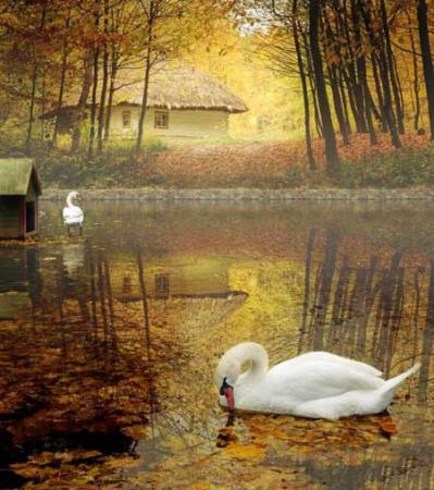 image, عکس های بسیار زیبا و کمیاب از فصل پاییز