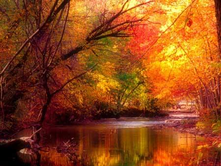 image عکس های بسیار زیبا و کمیاب از فصل پاییز