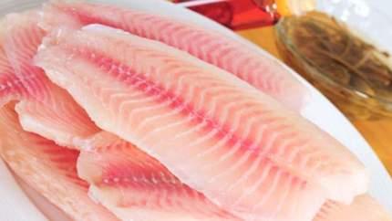 عکس, چرا اینقدر روی خوردن ماهی تاکید میکنند