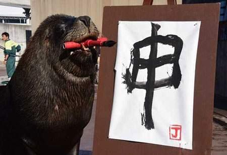 image, شیر دریایی  ژاپنی در حال کشیدن نقاشی