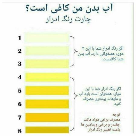عکس, چطور بفهمیم که در طول روز آب کافی می نوشیم یا نه