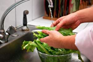 image, آموزش شستن تمیز میوه و سبزی با معجون های جادویی خانگی