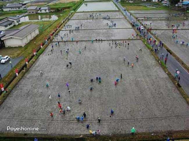 image گزارش تصویری از روستایی توریستی و دیدنی در ژاپین