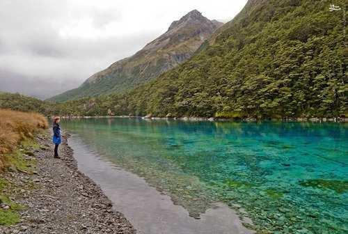image, عکس های دیدنی از دریاچه زیبای آبی در نیوزلند