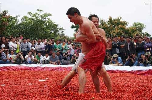 image, تصاویر دیدنی کشتی گرفتن در استخر گوجه فرنگی