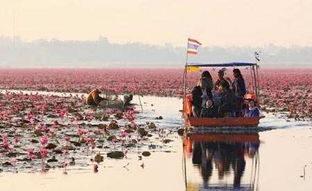 image عکس های زیبا از دریاچه نیلوفر قرمز