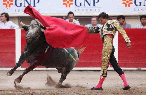 image, تصویری زیبا از گاو بازی در مکزیک