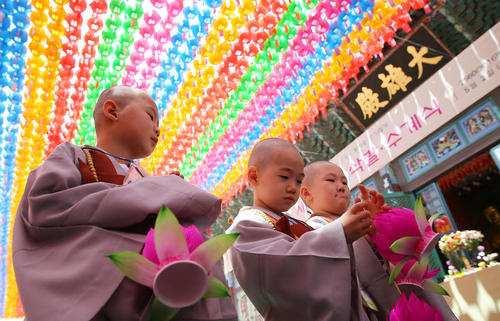 image, عکس زیبای راهبان خردسال بودایی در معبد سئول