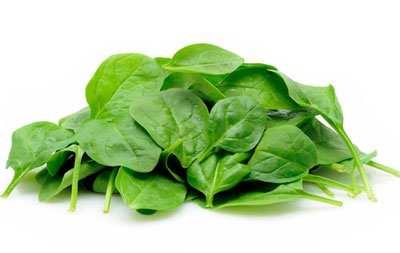 image بهترین گیاه ها برای ورزش بدنسازی و قوی کردن عضلات