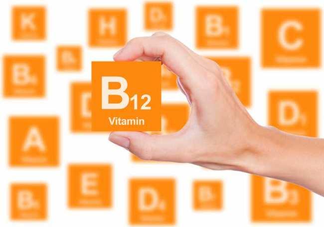 image, چه غذاها و خوراکی هایی بیشتر ویتامین ب ۱۲ دارند