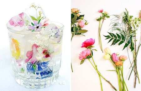 image چطور یخ های زیبا با طرح گل و میوه داخل آن درست کنیم