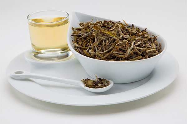 image چای سفید چیست و نحوه دم کردن و خواص آن