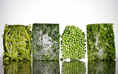 image نکته های مهم درباره فریز کردن مواد غذایی و استفاده مجدد از آنها
