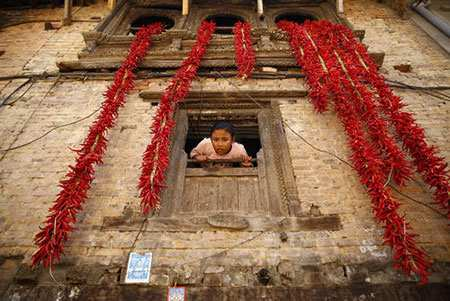 image, عکس هنری از خشک کردن فلفل قرمز در لالیتپور نپال