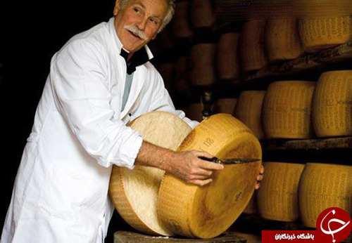image گزارشی جالب درباره بانک پنیرهای قدیمی در ایتالیا