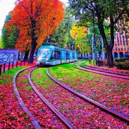 image, تصویری فوق العاده زیبا از پاییز رنگارنگ شهر میلان ایتالیا