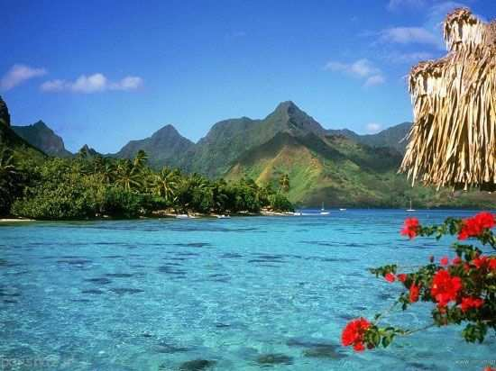 image, عکس های دیدنی از جزیره های شخصی آدم های معروف