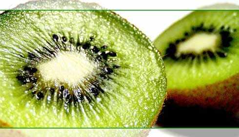 image, خوراکی های مفید برای تقویت چشم ها و بینایی بهتر