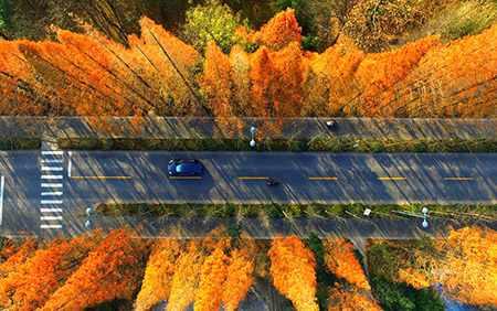 image عکس هوایی زیبایی از منظره پائیزی جاده ای در چین