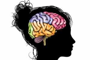 image اگر مغز انسان هارد دیسک بود چقدر ظرفیت داشت