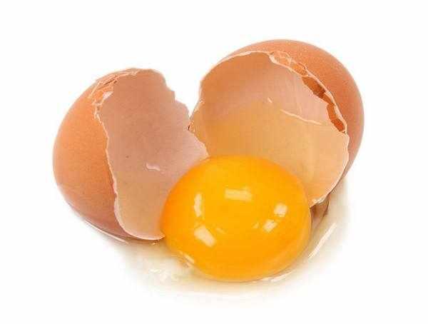 image اگر کمبود کلسیم دارید پودر پوست تخم مرغ بخورید