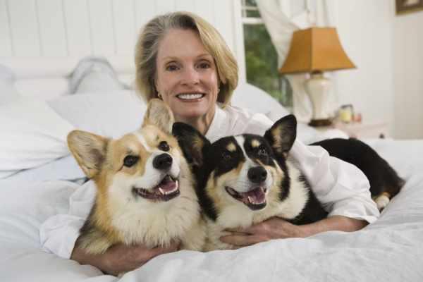 image, داشتن حیوان خانگی در خانه چه اثری روی زندگی شما دارد