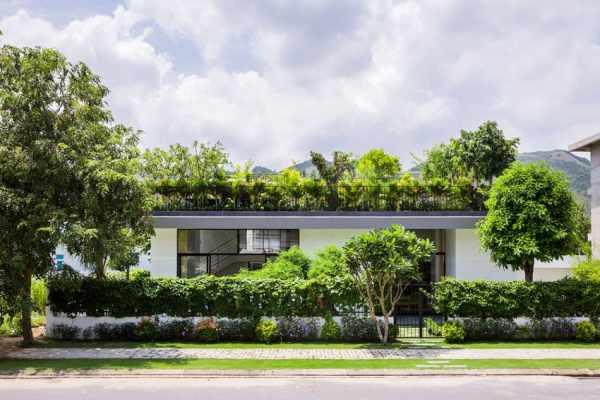 image عکس های دیدنی از طراحی باغی سر سبز روی پشت بام