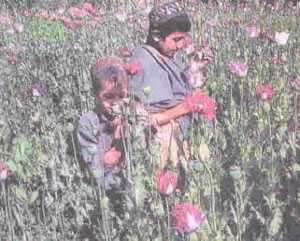 image فهرست وقایع و رویدادهای تاریخی مهم ۱۵ مهر