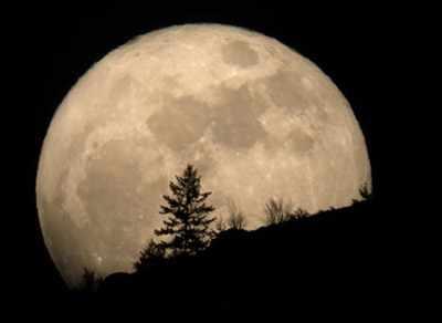 image, شعر زیبای کامشب قمر این جا قمر این جا قمر اینجاست شاعر شهریار