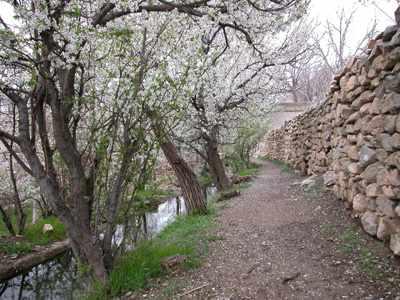 image, متن شعر آمد بهار خرم با رنگ و بوی طیب شاعر رودکی