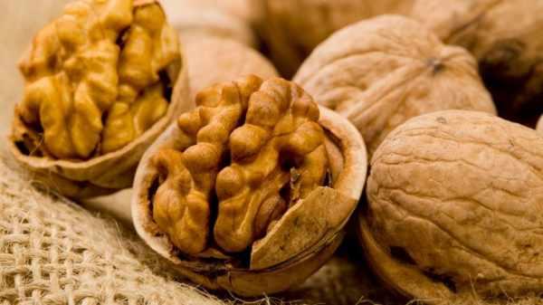 image, آیا استفاده از روغن گردو برای سلامتی خوب است یا خیر