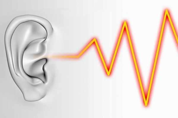 image چه خوراکی های وزوز گوش را بهتر میکنند