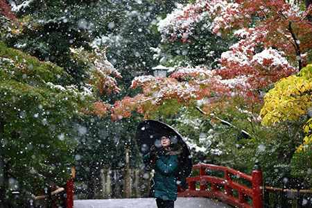 image دختری زیر چتر در بارش اولین برف سال ژاپن