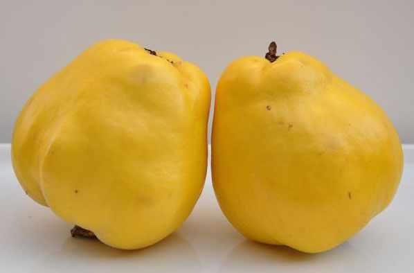 image میزان کالری میوه به و زمان مورد نیاز برای سوزاندن کالری آن