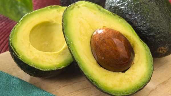 image خوراکی های صد در صد شکم آب کن