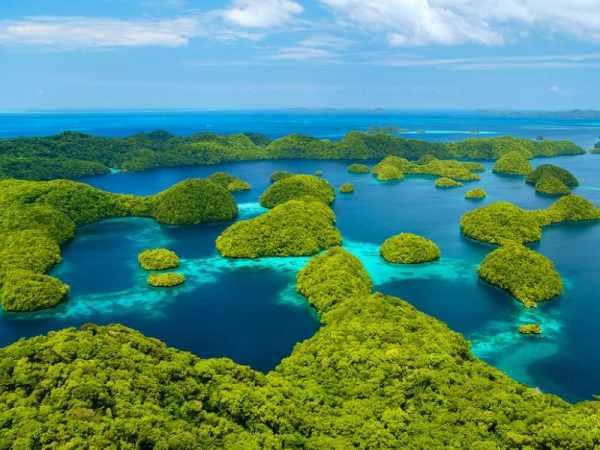 image طبیعتگردی در پالائو برای دیدن مناظر طبیعی بکر جهان