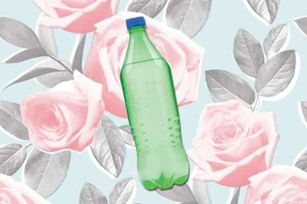 image, چه کنیم تا گل های تازه در گلدان دیرتر خشک شوند