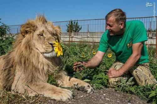image عکس های جالب دوستی انسان ها با حیوانات وحشی و درنده