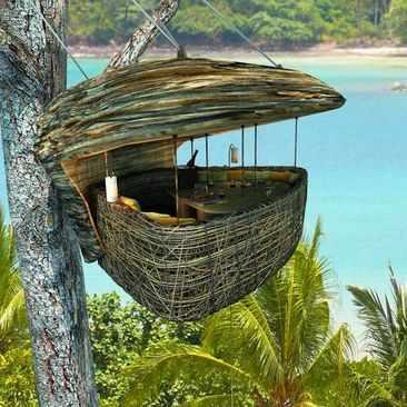 image عکس های جالب از یک رستوران درختی