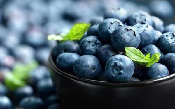 image آیا می توان مغز و قدرت حافظه را با خوراکی تقویت کرد